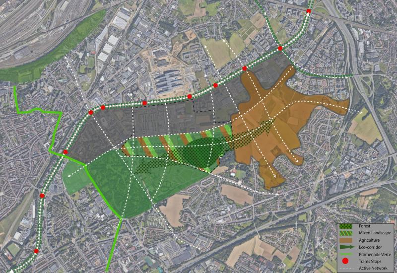 Principe-schema (indicatief): een gemengd landschap met min. 20 ha bos als schakel tussen begraafplaatsen en Woluweveld, ecologische corridor en netwerk voor actieve mobiliteit.